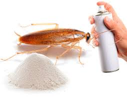 Какое самое эффективное средство от тараканов выбрать