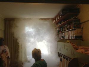 дымовая шашка от клопов