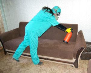 Как эффективно бороться с клопами в квартире