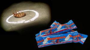 Как использовать мелок Машенька от тараканов
