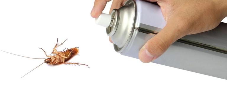 аэрозоли для тараканов